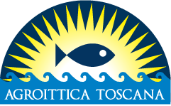 """Agroittica Toscana, Flai-Cgil: """"Ok la firma del protocollo. Ora garantire il corretto inquadramento dei lavoratori"""""""