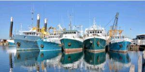 """Costrinse un marinaio irregolare a gettarsi in acqua per sfuggire ai controlli, Flai-Cgil si costituisce parte civile: """"Generato un danno grave per la credibilità del sindacato"""""""