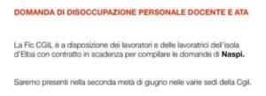 Personale docente e Ata dell'Isola d'Elba, Flc-Cgil a disposizione per la compilazione delle domande per la Naspi